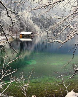 Winterlandschaft, Alpsee 1