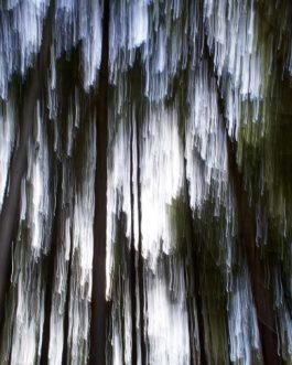 Abstrakt Wald 2